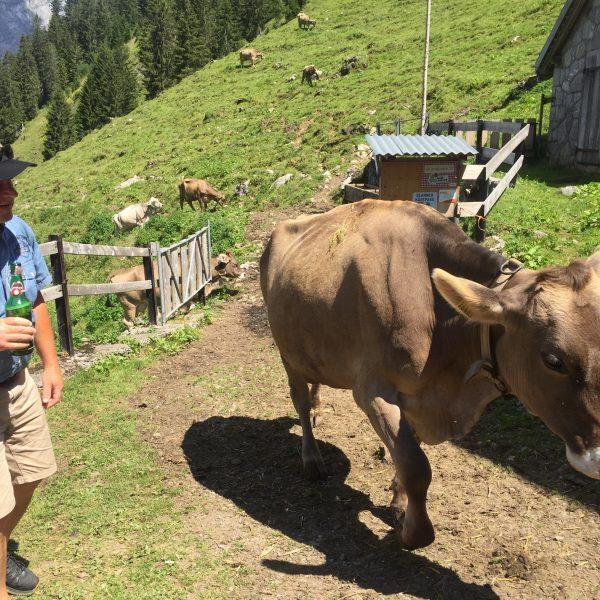 Budä-Uusflug auf die Alp Hinterschlatt